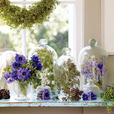 berries-window-l