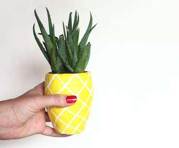 DIY Pineapple Planter from Lines Across